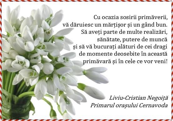 cernavoda-martie